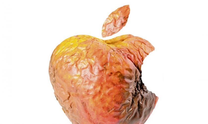 rotte-appel